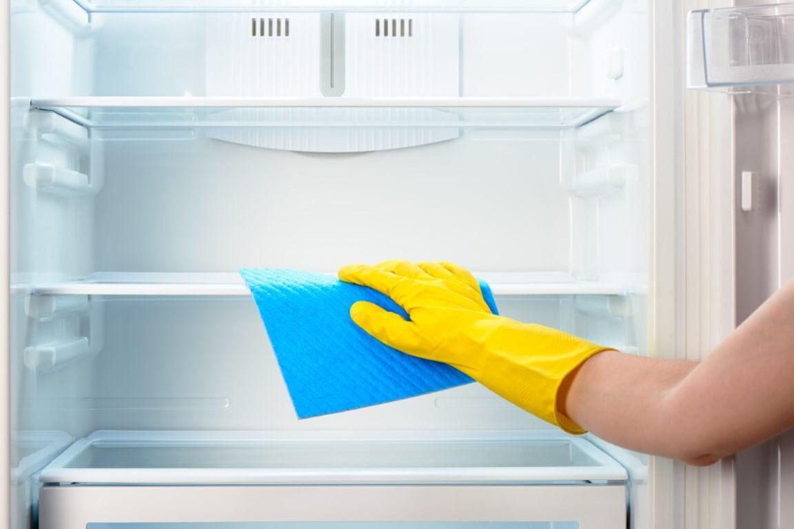 fridge maintenance